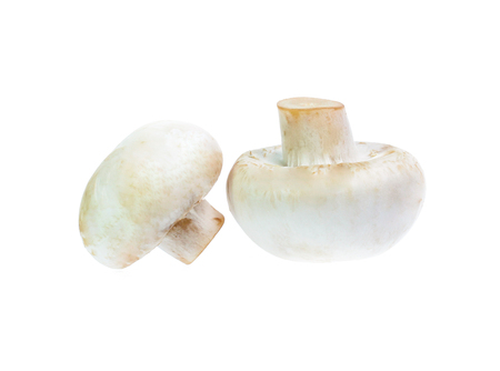 Mushroom champignon isolated on white