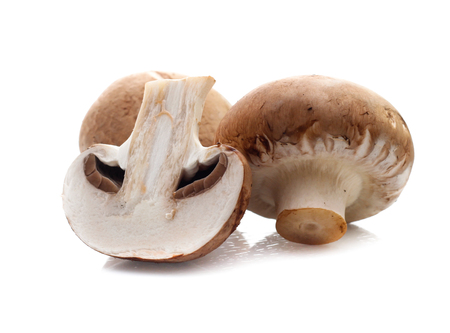 Champignon mushrooms on white