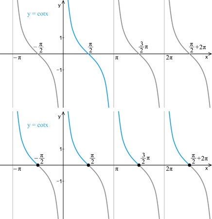 Function cotangent. Line graph on a white background. Trigonometry.