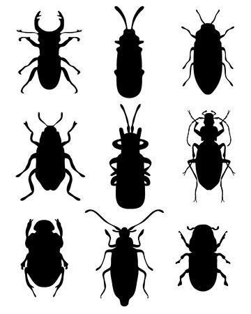 feeler: Black silhouettes of bugs, vector Illustration