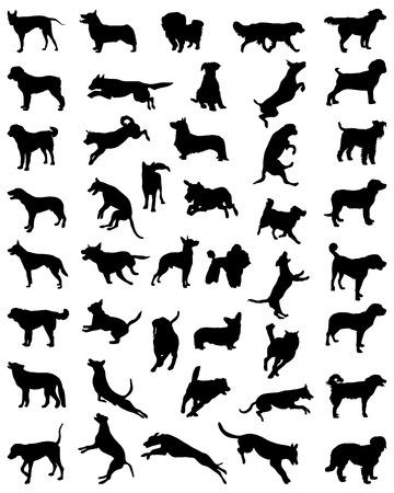 Black silhouettes of dogs, vector illustration Vettoriali