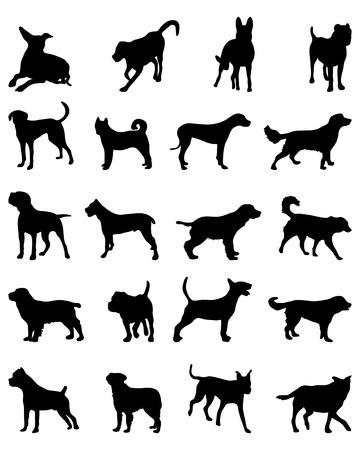 breeds: Silhouettes of different breeds of dogs 2, vector