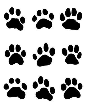 Black print of tiger paw, vector illustration