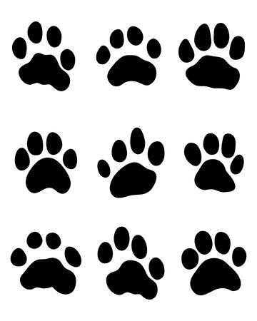 Black print of tiger paw, vector illustration