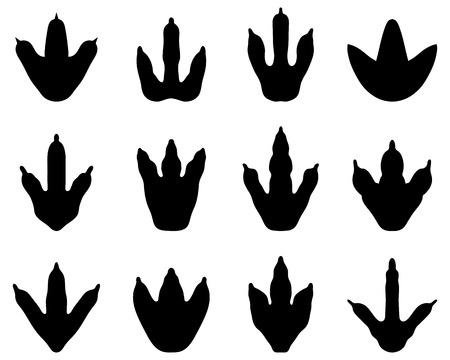 Black footprint of dinosaur, vector