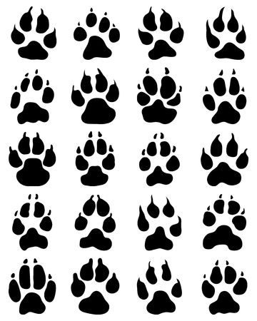 trot: Black print of dogs paws on white background