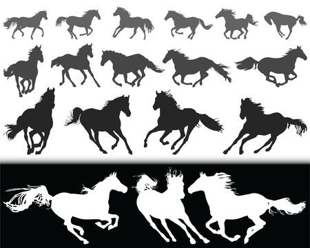 Zwarte silhouetten van paarden op een witte achtergrond en witte silhouetten op een zwarte achtergrond.