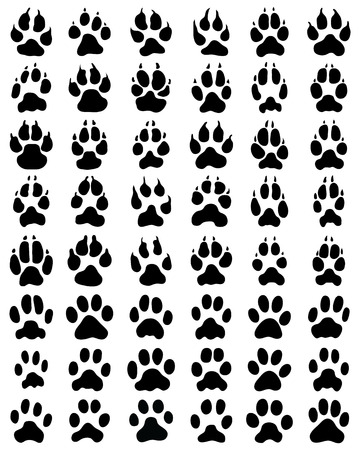 Black print of paws of dogs and cats on white background