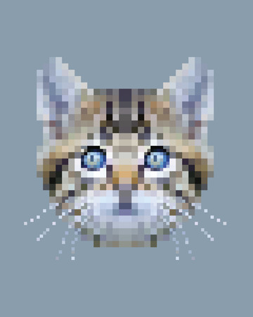 Pixel siberian cat face isolated vector photo-realistic illustration Ilustração