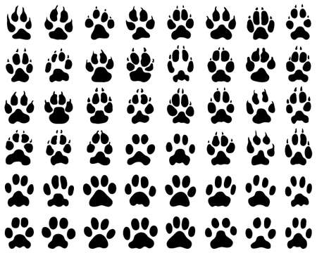 Black print of dogs and cats  paws on white background