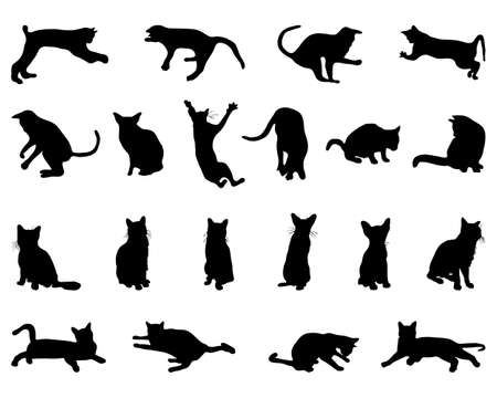 Black silhouettes of cats on a white background Illustration