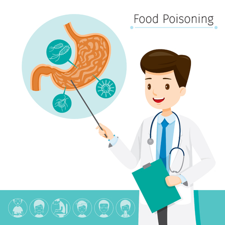 describes: Doctor Describes About Cause To Stomachache And Food Poisoning, Stomach, Internal Organs, Body, Physical, Sickness, Anatomy, Health