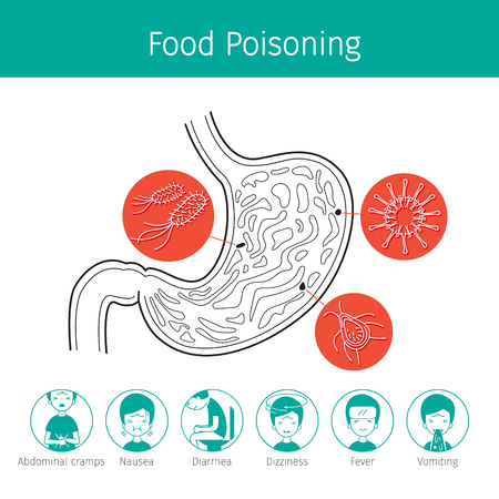 bacteria cartoon: Germs In Stomach Cause To Stomachache And Food Poisoning, Stomach, Internal Organs, Body, Physical, Sickness, Anatomy, Health