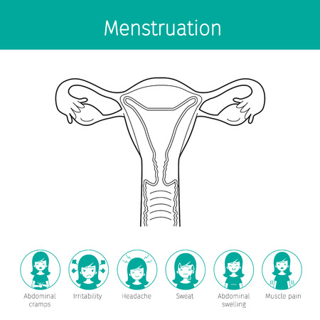 Illustration Of Human Uterus Outline And Menstruation Symptom