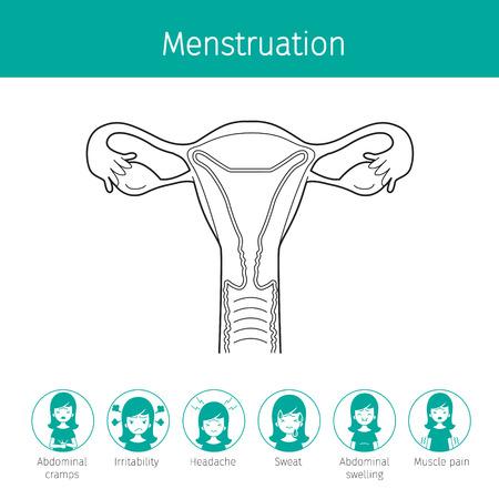 Illustration Of Human Uterus, Outline And Menstruation Symptom Icons, Female, Internal Organs, Body, Physical, Anatomy, Health