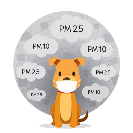 Dog Wearing Air Pollution Mask For Protect Dust PM2.5, PM10, Smoke, Smog, Respiratory, Environment, Health, Breath