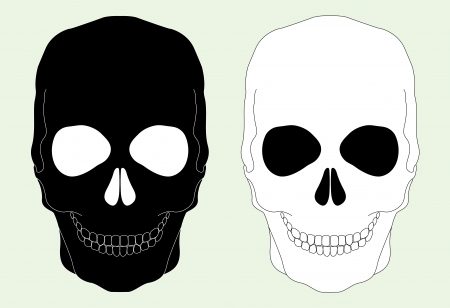 brainpan: Black and white skull on a light blue background Illustration