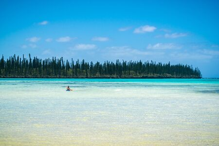 tropical beach with araucaria pines trees and couple in canoe kayak 写真素材