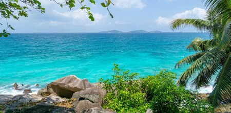 Beautiful seascape with palm tree on tropical beach, La Digue, Seychelles. Summer vacation and travel concept. Tropical beach