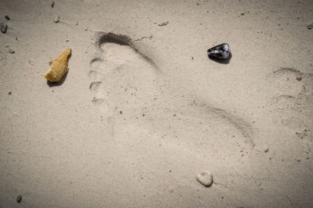 Footprints in sand. Close up of footprints on the sand beach with shells Reklamní fotografie