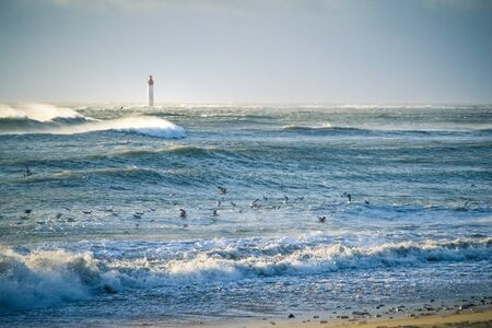 lighthouse in the sea during windstorm with seagulls. blue sky and beautiful waves