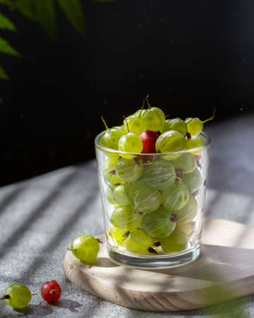 Green and red gooseberry berries in a glass transparent glass with water drops