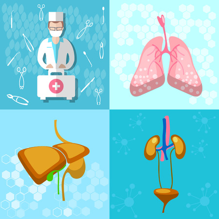 Medical icon collection: doctor ambulance first aid human organs hospital lungs liver kidneys bladder vector illustration