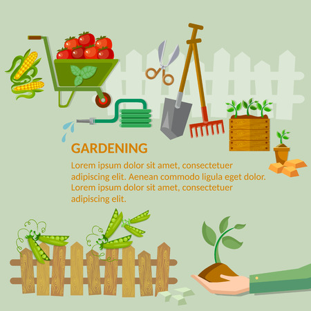 horticultural: Garden agriculture growing vegetables in the garden Illustration