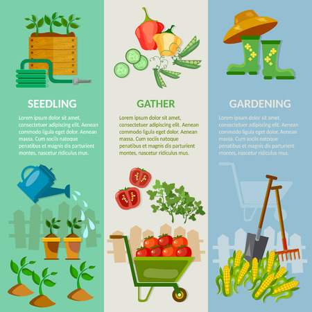 gardening tools: Spring garden banner working in the garden garden tools vegetable growing