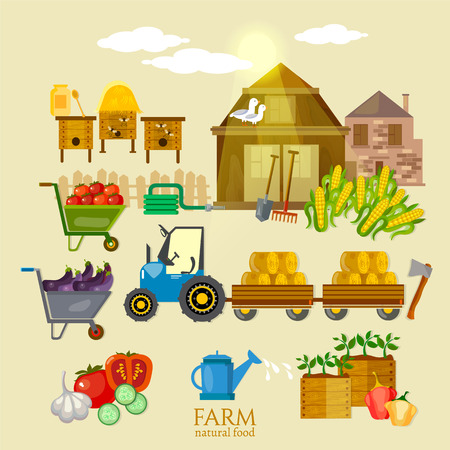 the sprouting: Farm collection organic product natural food machinery and tools on the farm vector illustration Illustration