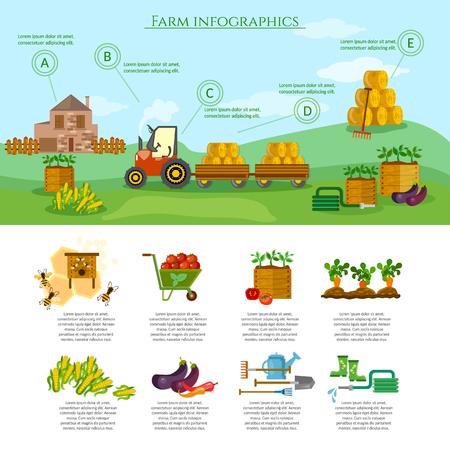 farm equipment: Farm infographics set natural food farming equipment agricultural objects vector Illustration