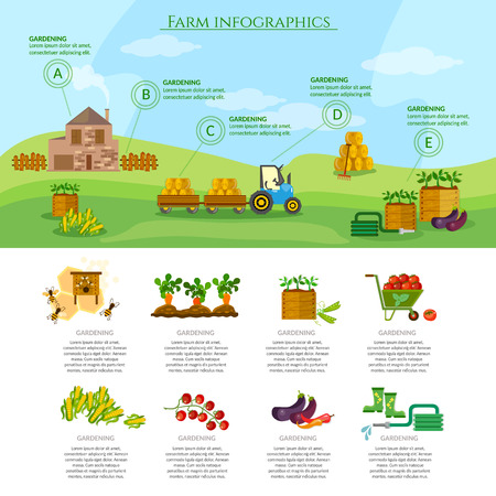 agricultural equipment: Farm infographics set natural food agricultural objects farming equipment vector