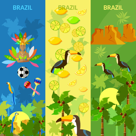 carnival costume: Brazil banners Rio de Janeiro brazilian culture and attractions girl in carnival costume vector illustration