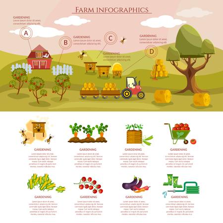 Granja infografía alimentos naturales agrícolas objetos de vectores