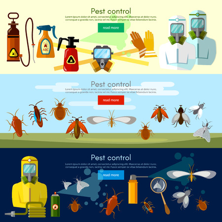 Pest control services banner detecting exterminating insects illustration