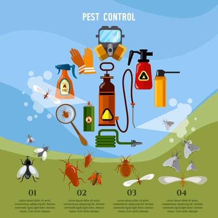Pest control service infographic detecting exterminating insects vector concept