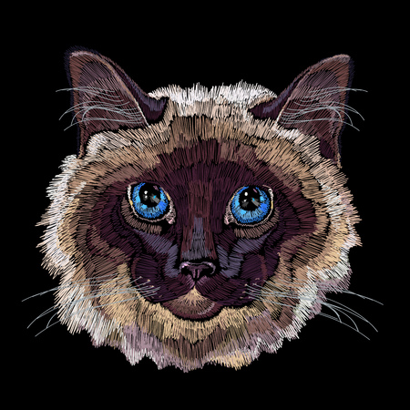 Embroidery siamese cat. Beautiful funny cat embroidery for clothes, textile t-shirt design fashion template 일러스트
