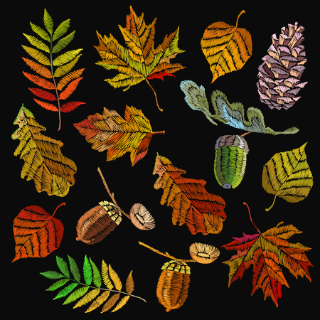 Embroidery autumn collection. Classical september embroidery autumn leaves, acorns wild forest, oak and maple leaves. Fashionable collection template for design of clothes, t-shirt design 일러스트