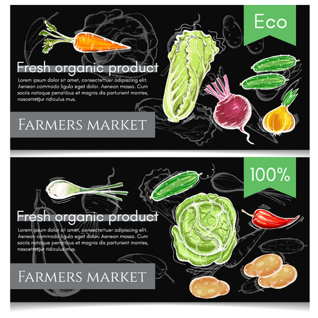 Vegetables banner. Fresh vegetarian healthy food of vector chalk sketch. Eco farmer vegetables, potato, carrot, cabbage, pepper. Healthy nutrition concept