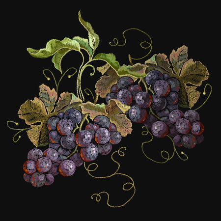 Embroidery cluster of grapes, beautiful still life. Template fashionable clothes, t-shirt design, print and renaissance style.