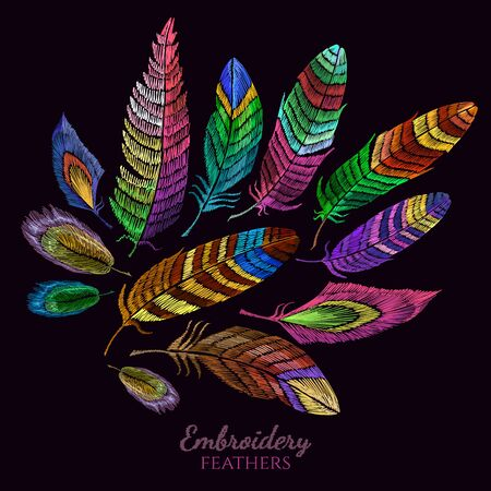 Color feathers embroidery collection fashionable template for design of clothes, t-shirt design. Beautiful feathers of tropical birds classic vector embroidery 스톡 콘텐츠 - 126839978