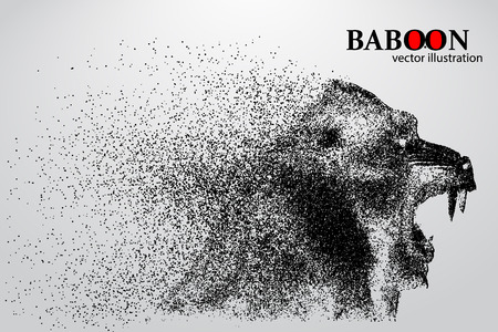 Silhouette of a baboon from particles. Background and text on a separate layer, color can be changed in one click.