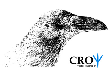 Silhouette of a crow from particles. Background and text on a separate layer, color can be changed in one click.