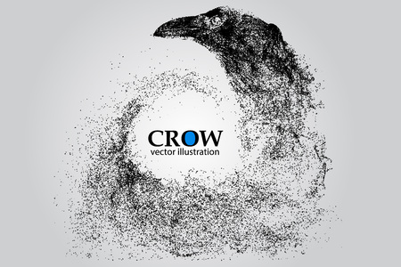 corvus: Silhouette of a crow from particles. Background and text on a separate layer, color can be changed in one click.