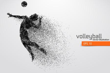 Silhouette des Volleyballspielers. Standard-Bild - 83553802