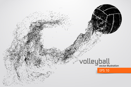 Silhouette of volleyball ball.