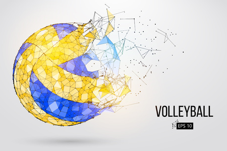 Silhouette of a volleyball ball. Dots, lines, triangles, text, color effects and background on a separate layers, color can be changed in one click. Vector illustration.