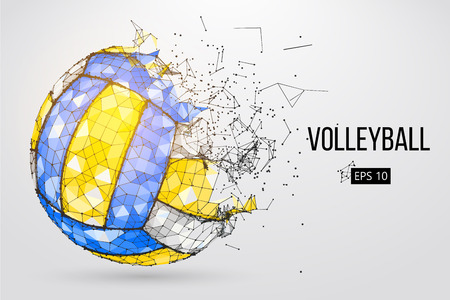 Silhouette of a volleyball ball. Dots, lines, triangles, text, color effects and background on a separate layers, color can be changed in one click. Vector illustration. Stock fotó - 95374143