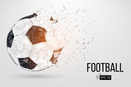 silhouette of a football ball. Vector illustration