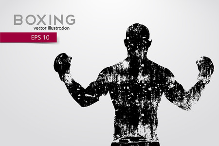 Boxing silhouette. Boxing. Vector illustration Stock Photo